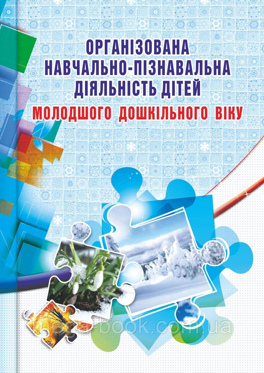Організована навчально-пізнавальна діяльність дітей молодшого дошкільного віку: розробки занять