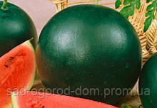 Семена арбуза Огонек 0,5кг