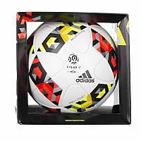 Мяч футбольный Adidas Pro Ligue 16 OMB AO4817, фото 1