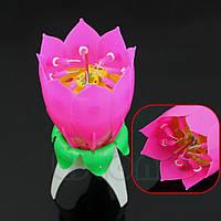Свеча музыкальная цветок лотос