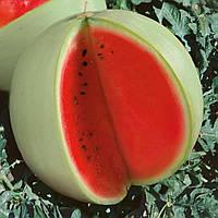 Семена арбуза Снежок 100г