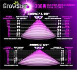 Фитолампа GrowStar 300W. Grow LED Lamp 300W (2X150W) 7 Band Spectrum., фото 5