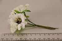 Букет ромашек (6 цветов)  2015-1-2-1
