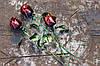Необычный подарок для девушки - роза