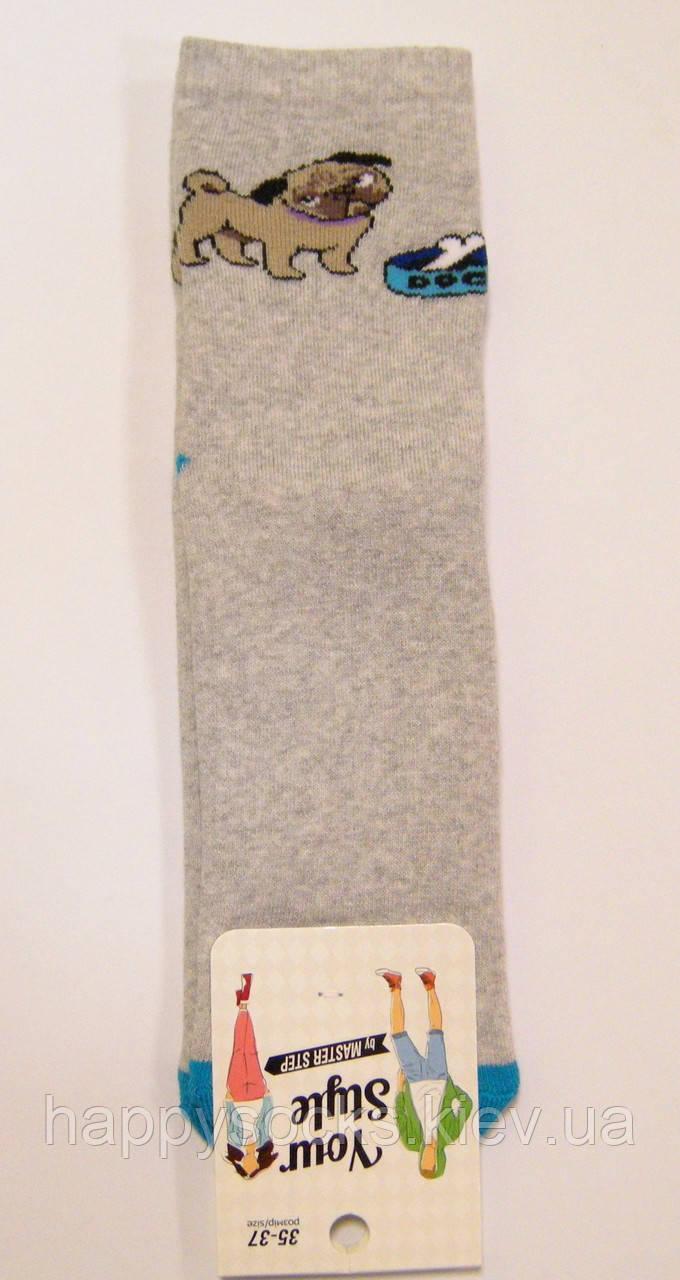 Женские носки с мопсом теплые