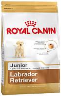 Роял Канин Лабрадор Ретривер Юниор Royal Canin Labrador Retriver Junior сухой корм для щенков 12 кг