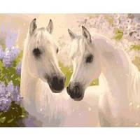 Картины по номерам - Пара коней 40*50см