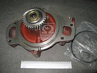Насос водяной SCANIA (производство Dolz) (арт. E118), ABHZX