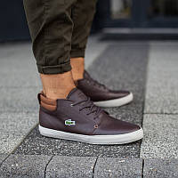Оригинальные мужские ботинки LACOSTE AMPTHILL TERRA 317 1 05e1aabf8747a