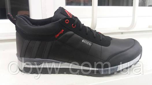Ecco doroga кожаные мужские кроссовки  продажа, цена в Днепре ... 0b59afac726