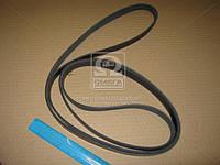 Ремень поликлиновый 6PK2824 (производство DONGIL) (арт. 6PK2824), ACHZX