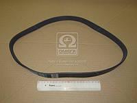 Ремень поликлиновый 7PK1075 (производство DONGIL) (арт. 7PK1075), AAHZX