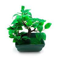 Бонсай дерево искусственное (13 х 9 х 6.5 см)