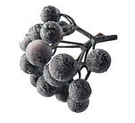 Синие ягоды Терн (голубика) гроздья 2 шт/уп