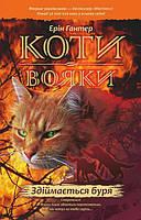 Коти-вояки. Здіймається буря. Книга 4. Гантер Ерін
