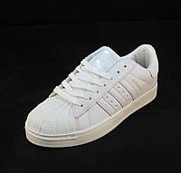 Кроссовки женские Adidas Superstar белые (р.36,37,38,39,40)