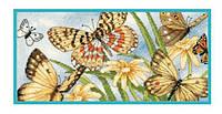 65055 Набор для вышивания крестом DIMENSIONS Виньетка с бабочками