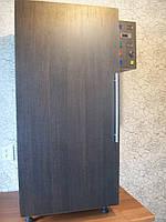 Электростатическая коптильня холодного и горячего копчения с функцией сушки и вяления продуктов питания