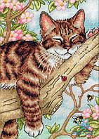 65090 Набор для вышивания крестом DIMENSIONS Дремлющий котенок