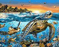 Картины по номерам 40×50 см. Морские черепахи Художник Адриан Честерман
