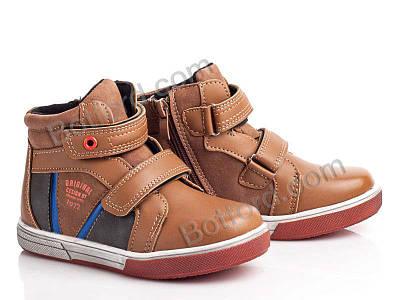 Ботинки Башили Z3117 brown