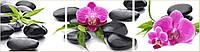 Картины по номерам 40х150 см. Триптих Орхидеи на камнях