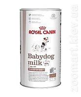 Royal Canin Babydog Milk (Замінник сучого молока для цуценят з народження до відлучення
