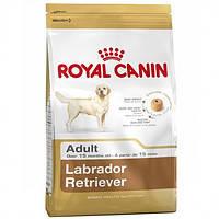 Роял Канин Лабрадор Ретривер Эдалт Royal Canin Labrador Adult сухой корм для взрослых собак 12 кг