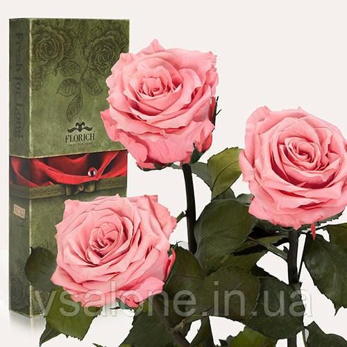 Долгосвежая троянда FLORICH - Набір з 3шт РОЖЕВИЙ КВАРЦ (7 карат на короткому стеблі)