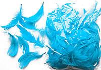 Перья декоративные голубые 120 шт