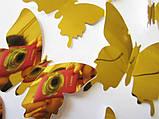 Дзеркальні 3D метелики для декору та інтер'єру Золотисті (05256), фото 2