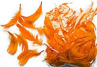 Перья декоративные оранжевые 120 шт