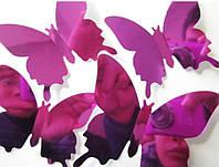 Зеркальные бабочки 3D  (05293)