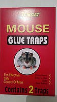 Клеевая ловушка домик для мышей