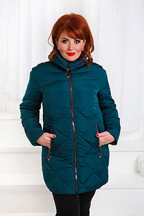 ДТ0036 Куртка зимняя размеры 48-56, фото 2