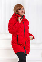 ДТ0036 Куртка зимняя размеры 48-56, фото 3