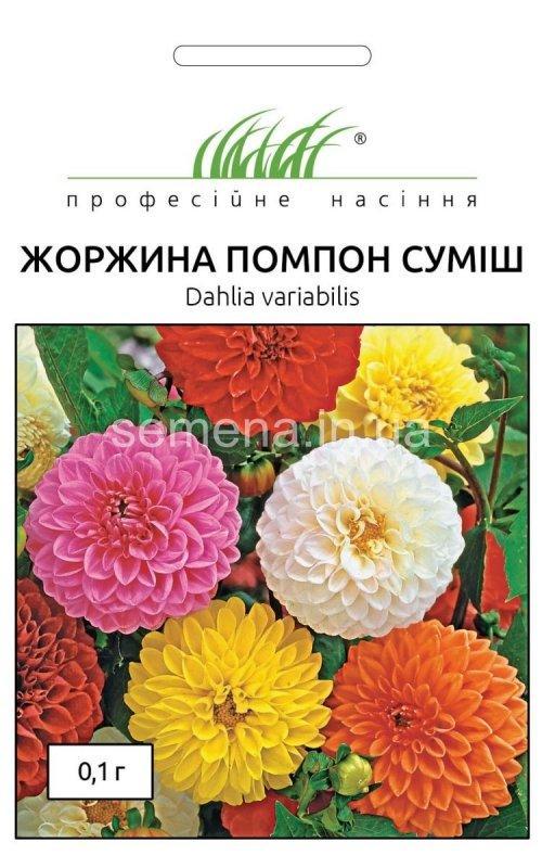 Насіння жоржини Помпон суміш, 0,1 г