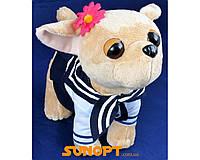 Мягкая игрушка Собака в одежде №3430