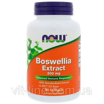 Now Foods, Экстракт босвеллии, 500 мг, 90 капсул, фото 2