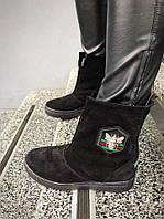 Зимние замшевые женские сапожки-угги Гуччи черные