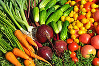 Большой выбор семян овощей от разных производителей.