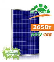 Amerisolar AS-6P30 265 W поликристаллическая солнечная панель (батарея, фотомодуль)