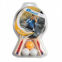 Набор для настольного тенниса Appelgren 300 2-Player Set 788417