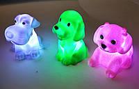LED Собачки  отличный подарок