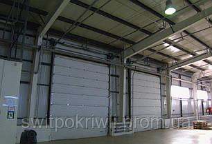 Промислові ворота Алютех ProTrend, фото 2