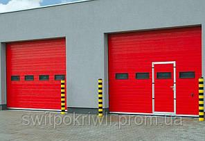 Промышленные ворота Алютех ProTrend, фото 2