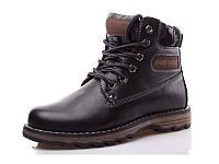 Зимние ботинки для мальчика Paliament C6816 (31-36)