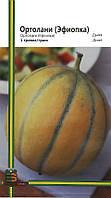Семена дыни Ортолани (Эфиопка) 1 г, Империя семян