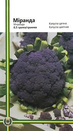 Семена капусты цветной Миранда фиолетовая 0,5 г, Империя семян, фото 2
