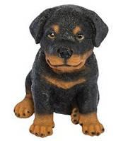 Статуэтка (копилка) собака щенок ротвеллера цветной